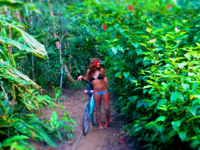 What's it Really Like to Live in the Costa Rican Jungle?