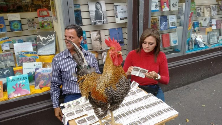 Rooster For Good Luck?