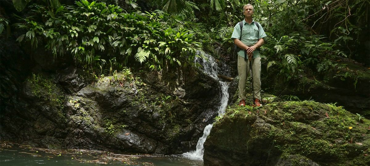 """What Happened to My Son? National Geographic explorer Roman Dial is determined to find out what happened to his son, Cody Roman Dial, on a solo expedition through the Corcovado National Park in Costa Rica. """"We're going to dig in our heels and stay until we get the answers we need."""""""
