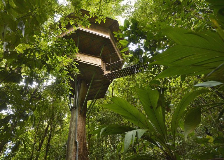 Go Out On A Limb: Costa Rica's Best Tree Houses