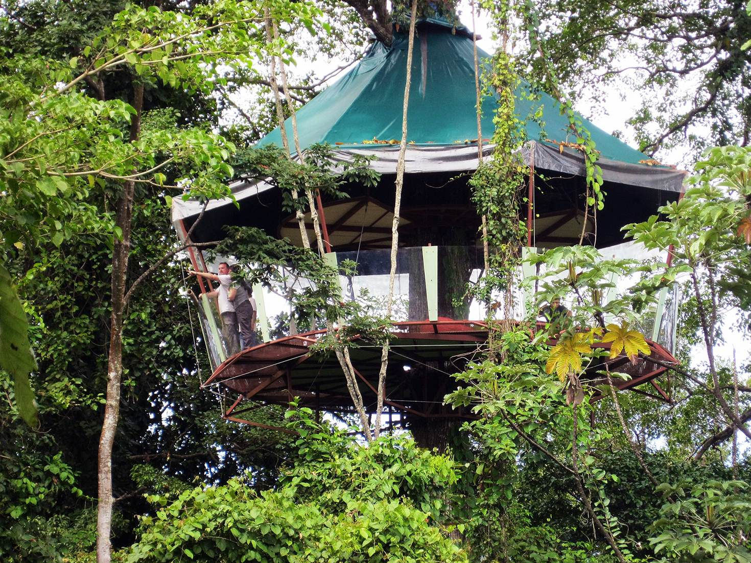 The tree house at Nature Observatorio requires guests to ascend via rope and harness © Nature Observatorio