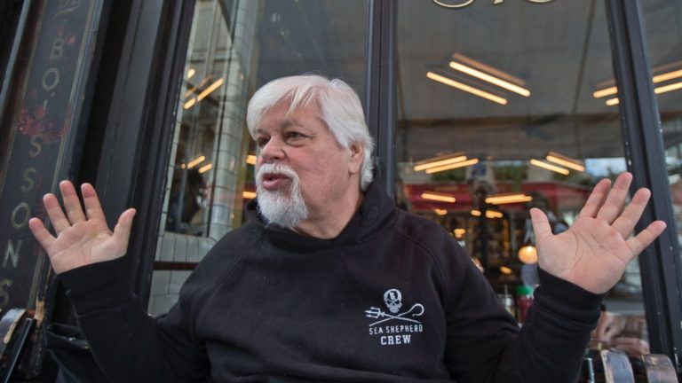 Paul Watson, Founder of Sea Shepherd, Says Costa Rica Charges Are Trumped Up