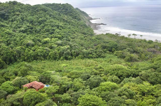 Mel Gibson In Row With Muni in Nicoya, Guanacaste
