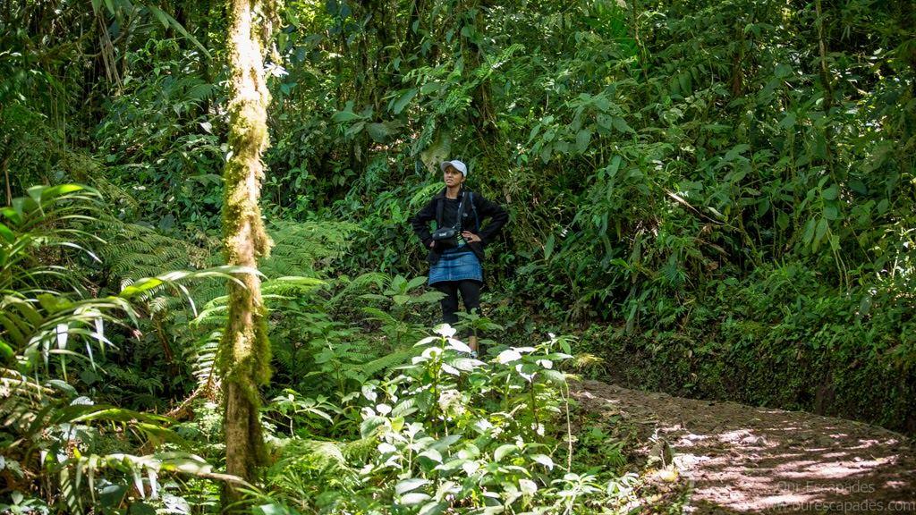 Our-Escapades-Monteverde-7