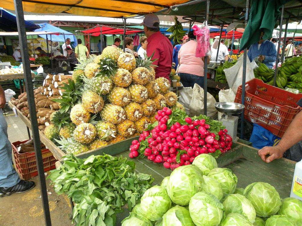 """The """"Feria del Agricultor"""" (Fair of the Farmer) happening all over Costa Rica every weekend is great way to buy fresh fruits and vegetables and much cheaper than the local supermarkets."""