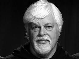 The eco-activist founder of the Sea Shepard Society, Paul Watson, continues on the Interpol list, wanted by Costa Rica.