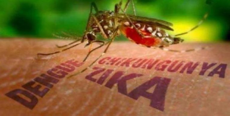 Costa Rica Confirms First case of Zika-associated Syndrome