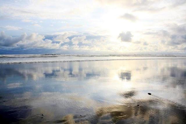 matapalo-beach-sunset-baby-turtles-to-sea