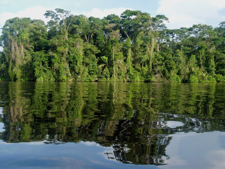 Costa Rica Hastens to Recover Its Previously Undervalued Wetlands