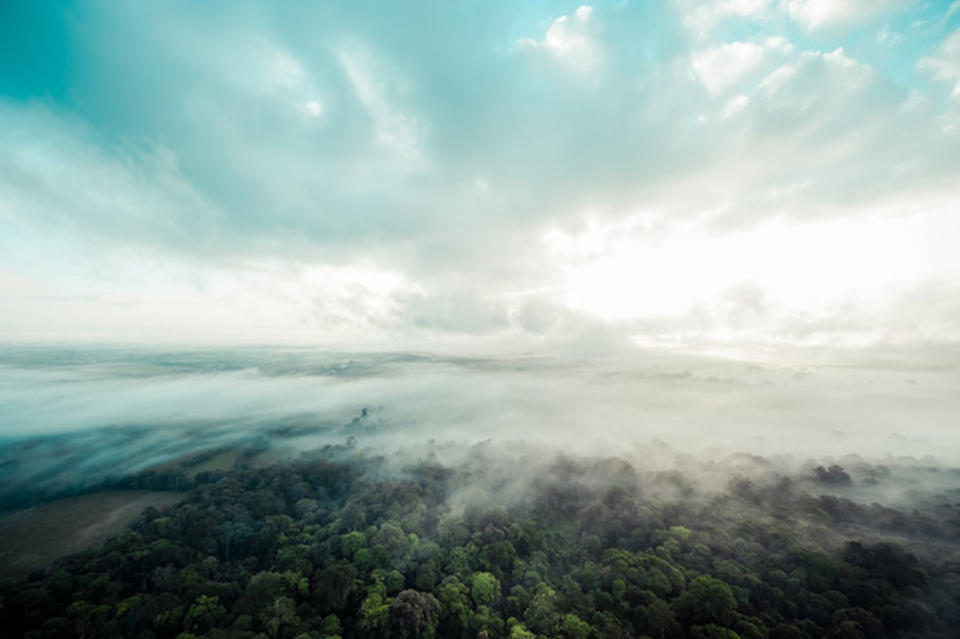 One of Costa Rica's many rain forests, as seen from a hot-air balloon. Credit Toh Gouttenoire for The New York Times