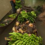 Voices-Indio-Maiz-Nicaragua-8315-600×902