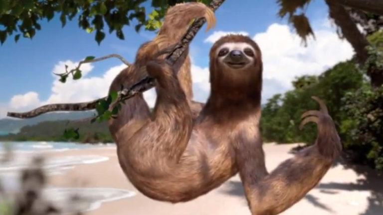 A Talking Sloth Wants You To Come To Costa Rica