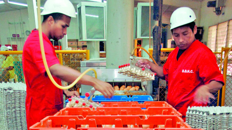 Panama Records Increase In Consumption of Poultry Products