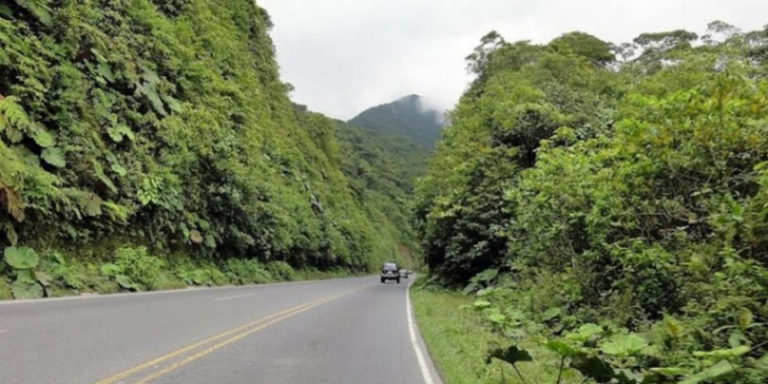 Environmental Study for Road to Limon Rejected