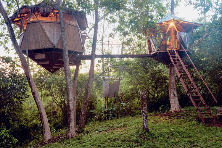 Sacred Geome-Tree House es uno de los hospedajes que ofrece AIRBNB en el país