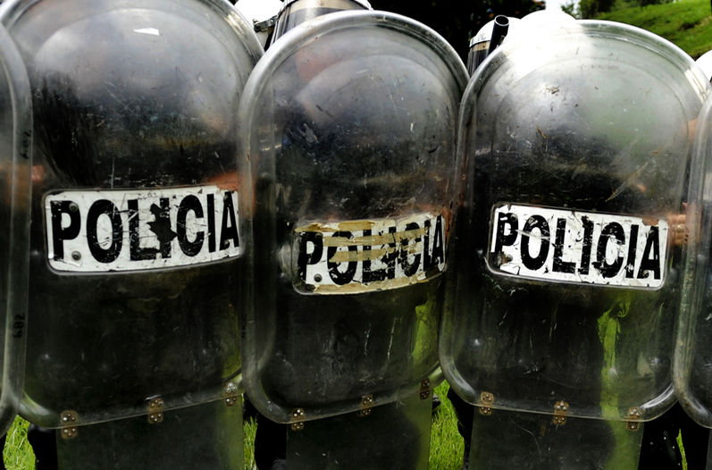 115 police officials were fired or in the process of being fired for committing serious crimes