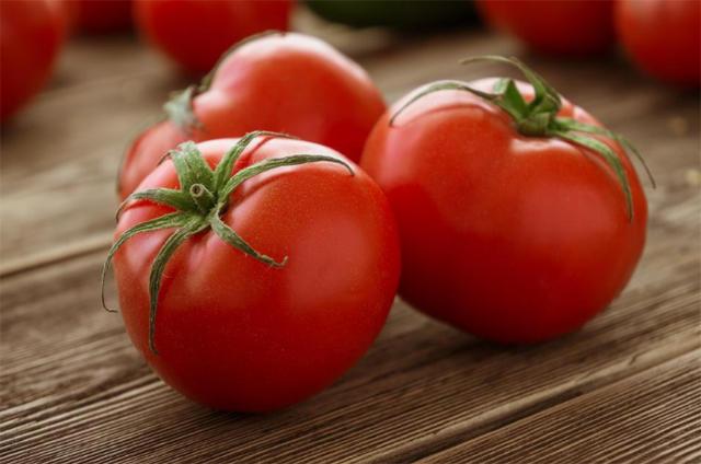 Prodigio: A New Tomato in Costa Rica