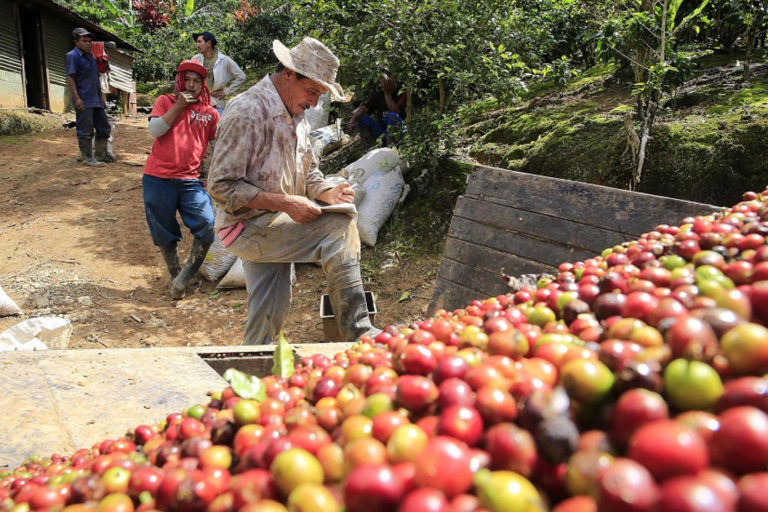 Opposition to Changes To The Costa Rica – Colombia Trade Agreement Conditions