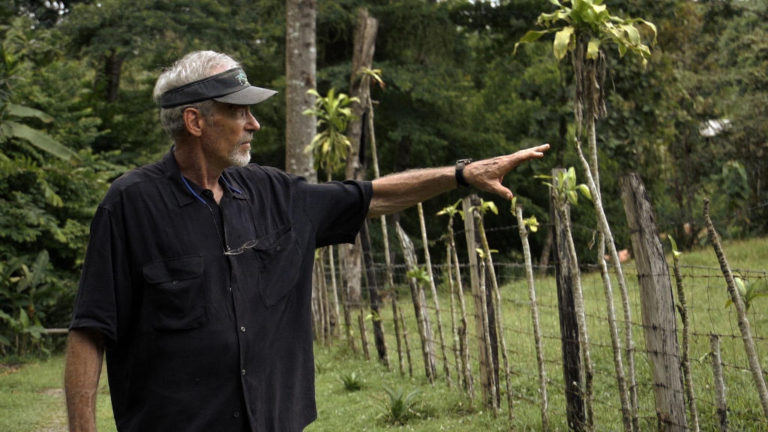 Journey to a Costa Rican Food Forest