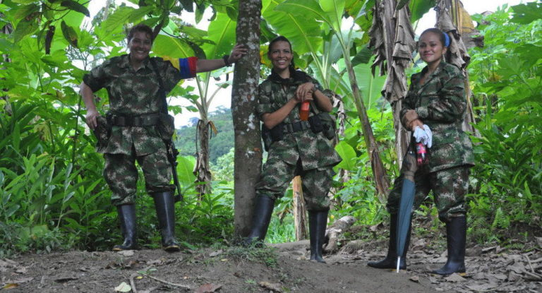 Monuments Made of FARC Guerrillas' Weapons to Be Erected at UN Headquarters