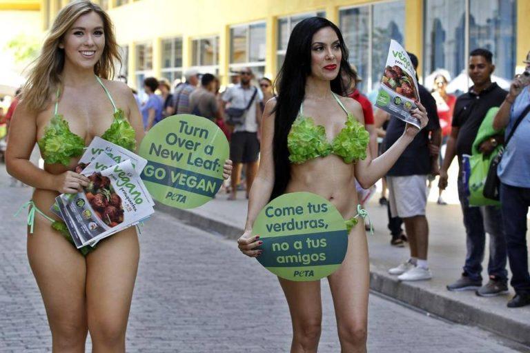 The 'Lettuce Ladies' Get To Work In Cuba