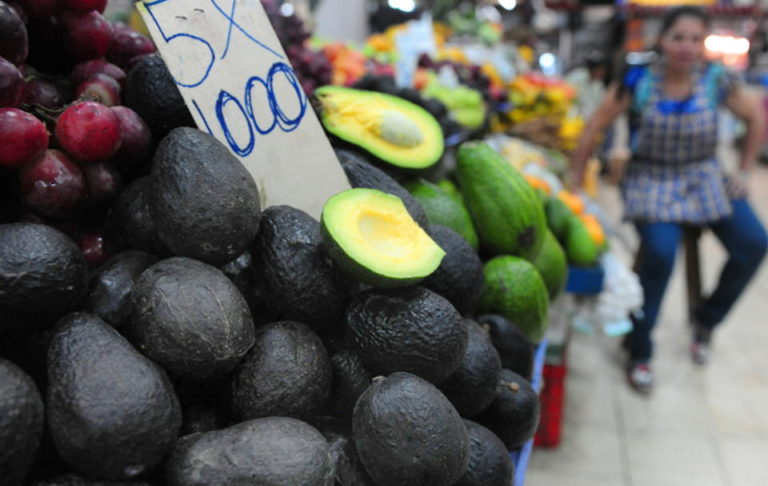 Mexico Files WTO Complaint Against Costa Rica Over Avocado Imports Ban