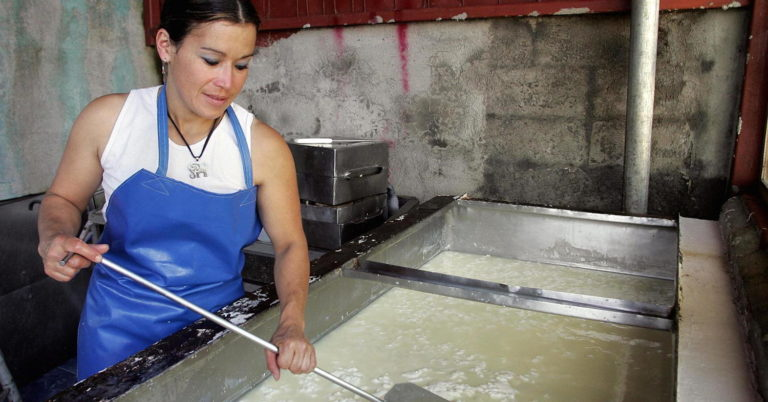Turning Cheese Into Profit in Costa Rica