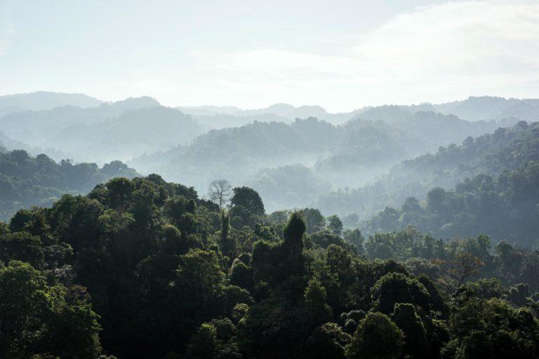 Finding Pura Vida on the Costa Rican Coast