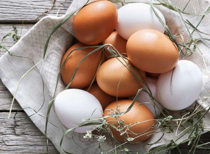 Brown Eggs and White Eggs, What's The Difference?