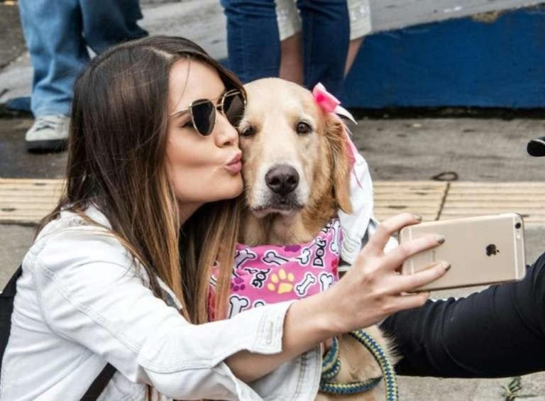 Animal Welfare Law In Costa Rica Became A Reality on Sunday