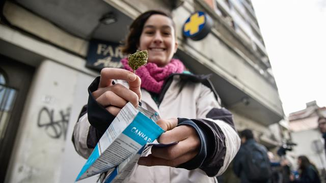 Uruguay's Pharmacies Ran Out of Government Marijuana within Hours on First Day of Legal Sales