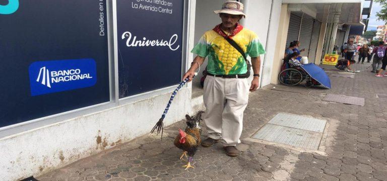 Paquito y Martin