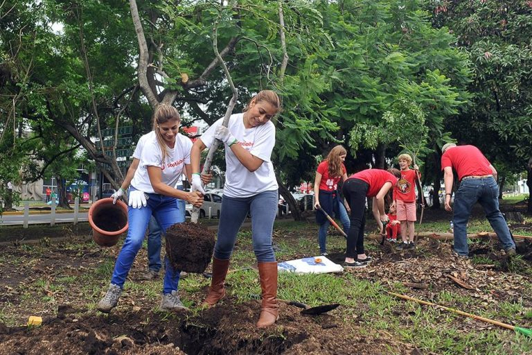 The Reforestation of La Sabana Park