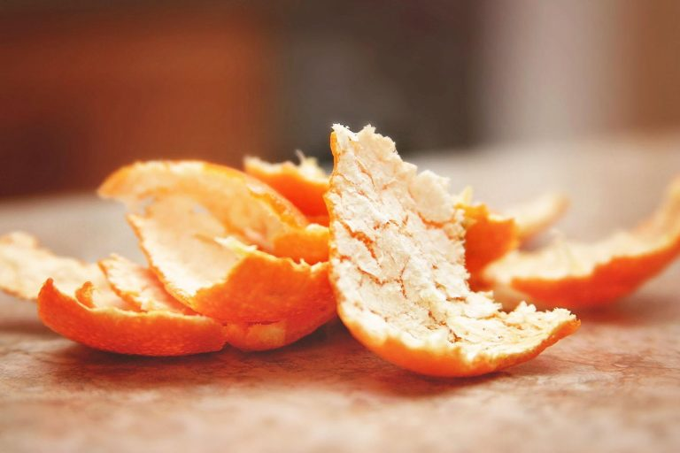 Costa Rica Could Benefit From High Price of Florida Orange Concentrate
