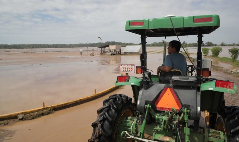 Damages Over Nate Expected To Fuel New Increases In Food Prices