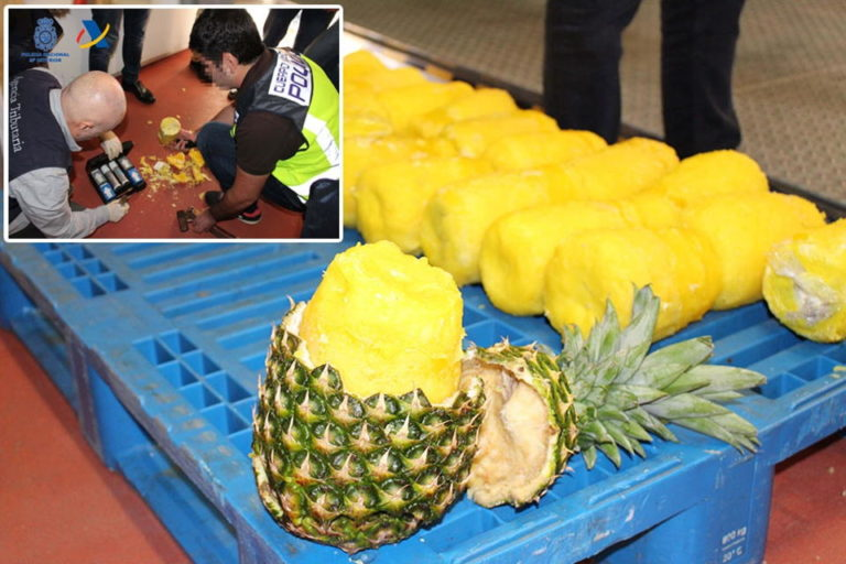 Juicy: Spain Police Bust Gang Who Smuggled Cocaine In Pineapples From Costa Rica