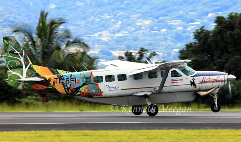 Plane Crash Investgation Could Take Months