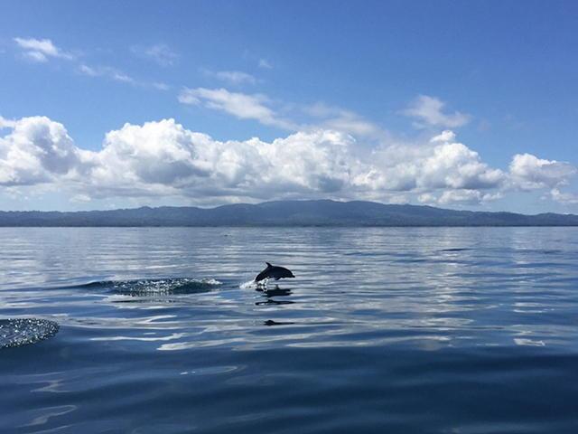 Costa Rica Expands Marine Areas under Conservation Program