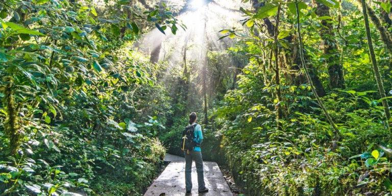7 Ways to Costa Rica & Chill