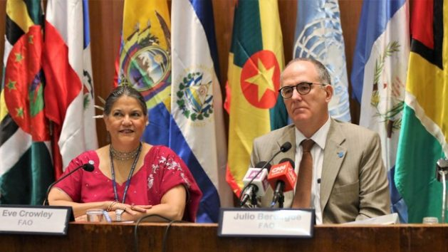 Latin America Focuses on Attacking Pockets of Rural Poverty