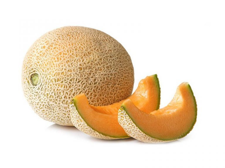 Guatemala becomes world's largest melon exporter