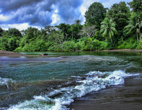 Q&A with Larry Crowder: Costa Rican Initiative Refocuses On Marine Issues
