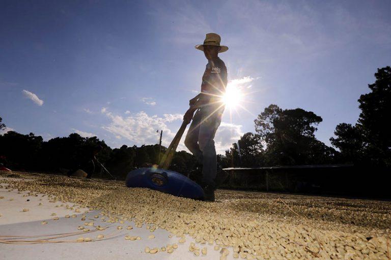 Juan Valdez Stirs Competition With Nicaragua Arrival