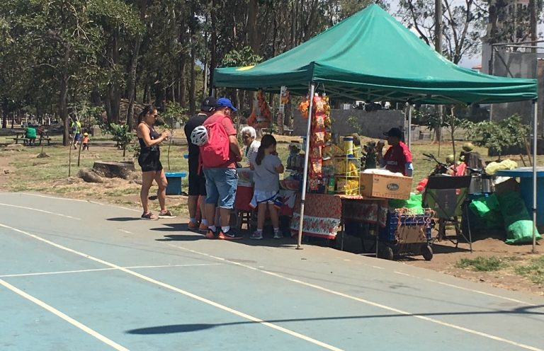 Vendors Take Over The Sabana Park Track, And What Is Muni Doing About It?