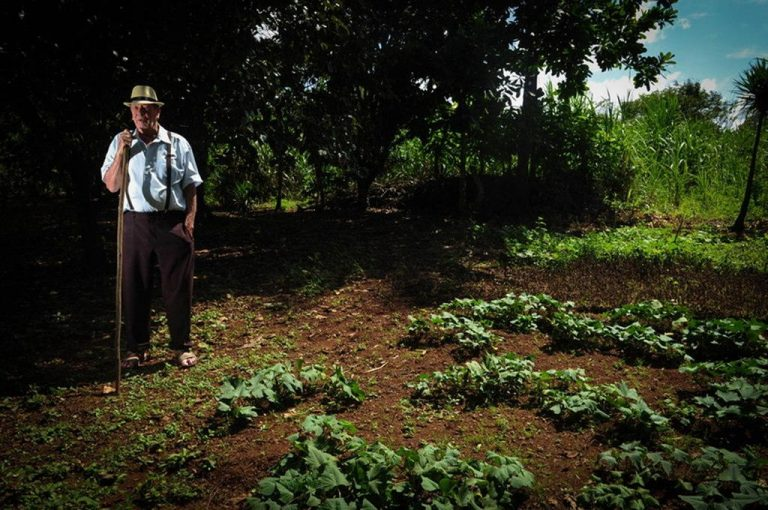 With an eye on the sky, Costa Rica's farmers harvest rain to beat drought