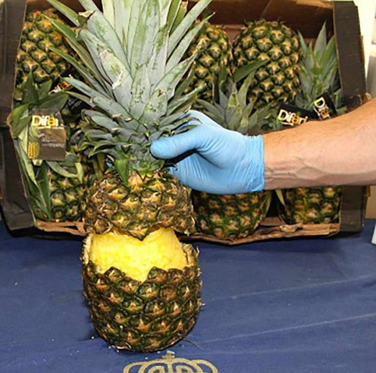 Spanish police find an unusual cocktail from Costa Rica – pineapple and cocaine