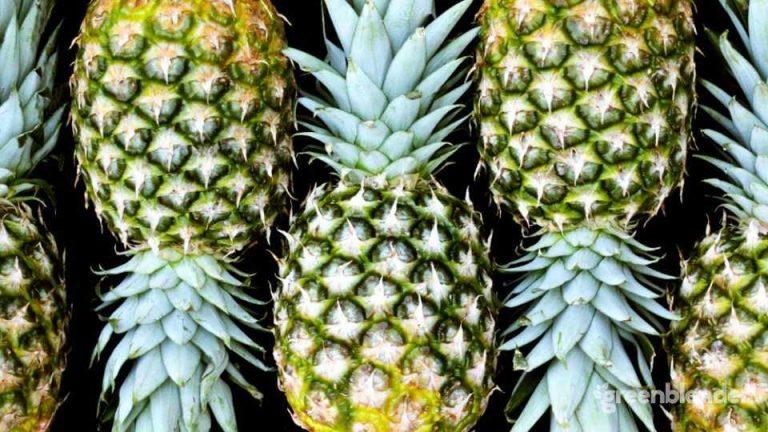 Organic pineapple in the post-truth era