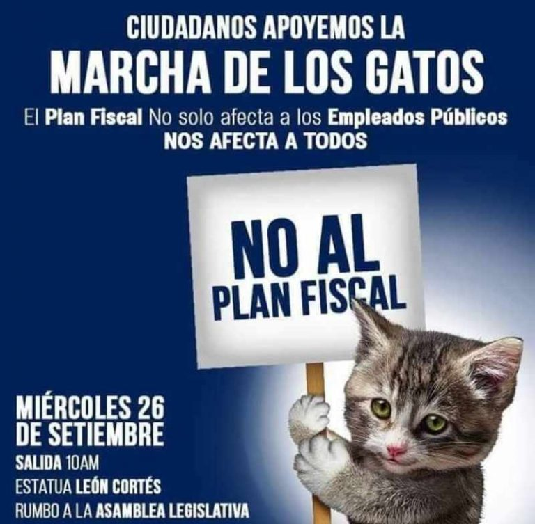 """""""Marcha de los Gatos"""" In San Jose On Tap For Today, Day 17 Of The National Strike"""