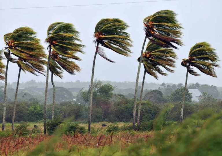 Wind Gusts To Reach 100 km/h Today (Tuesday)