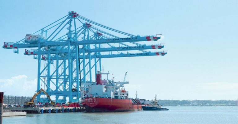 Moín Container terminal catapults Costa Rica as port leader of Latin America